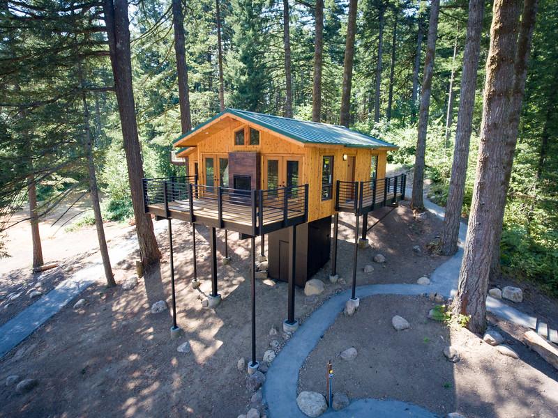 Treehouses_2020-1011.jpg