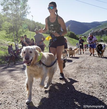 Rocky Dog Trail Run
