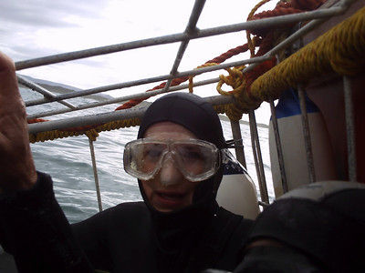 South Africa - Shark Cage Diving