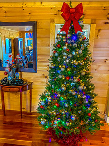 Christmas Decorations - 12-5-2020