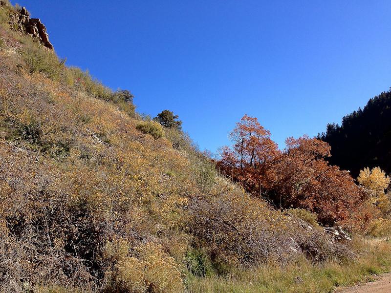 Waterton Canyon 021.jpg
