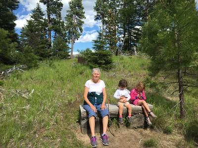 2015-06-13 Blewett Pass Swauk Forest Discovery Trail