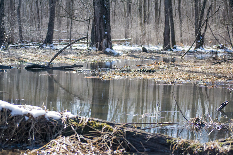 *2018-02-18 Wallkill River Kayaking in Winter-2018 02 18 (76 of 127)-024.jpg