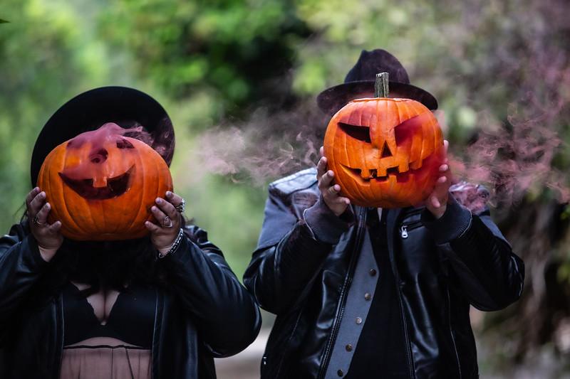 pumpkin orchard-211.jpg