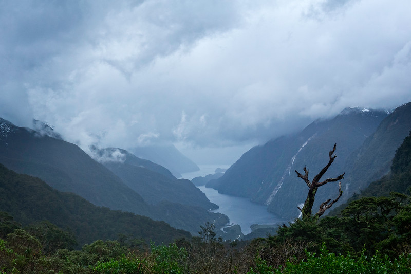 Doubtful Sound Overlook