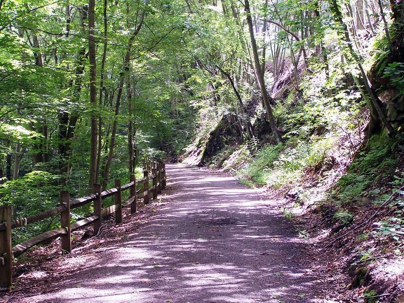 Hoodlebug Trail Scene north of Homer City