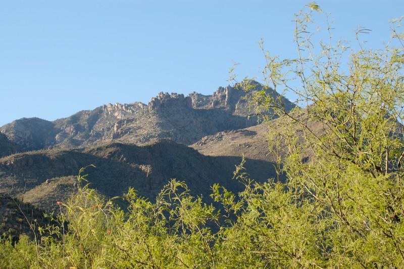 20050429 Sabino Canyon387.jpg