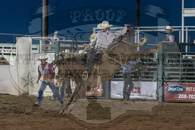Payette Co Pro Rodeo 2019 - Friday