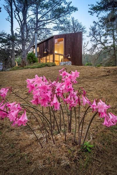 Larry Halprin Studio Sea Ranch at Twilight
