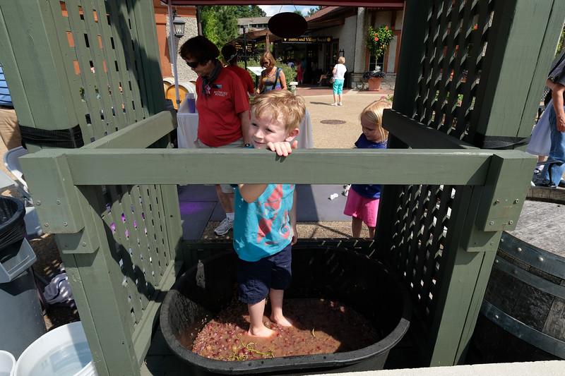 20170820 105 stomping grapes at Biltmore Winery.JPG