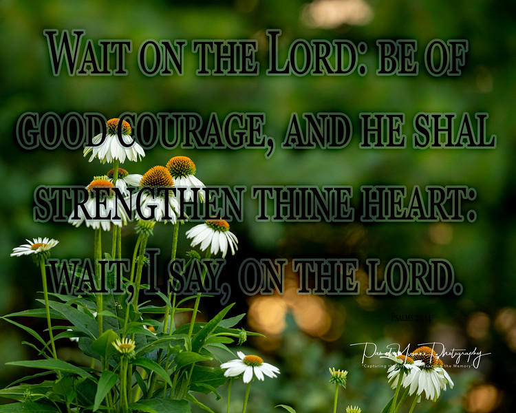 Psalms 27 14.jpg