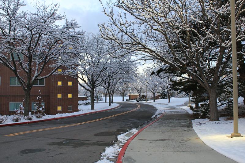 Winter_Scenery_12_19_2012_4110.JPG