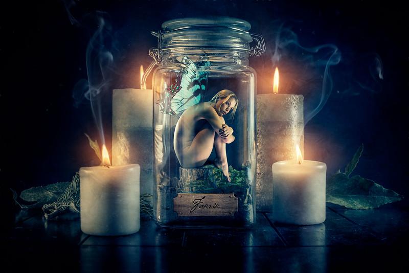 fairy-specimen.jpg