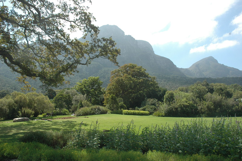 Kirstenbosch Botanical Garden - Leslie Rowley