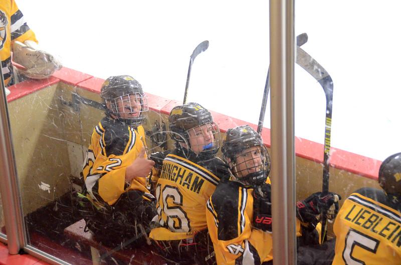 141004 Jr. Bruins vs. Boston Bulldogs-216.JPG