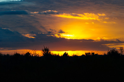 San Bernard & Brazoria NWR-Nov 2013