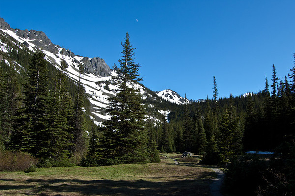 lower meadow with moon