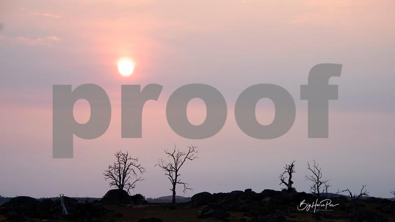 cooma sunrise aa-1.jpg
