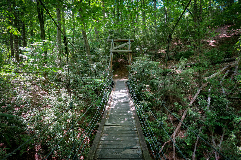 Andy Cove Nature Trail (#288)