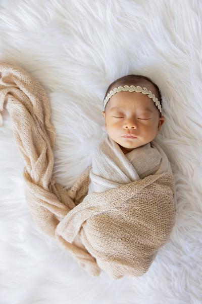 baby-evelyn+jocelyn-1562.jpg