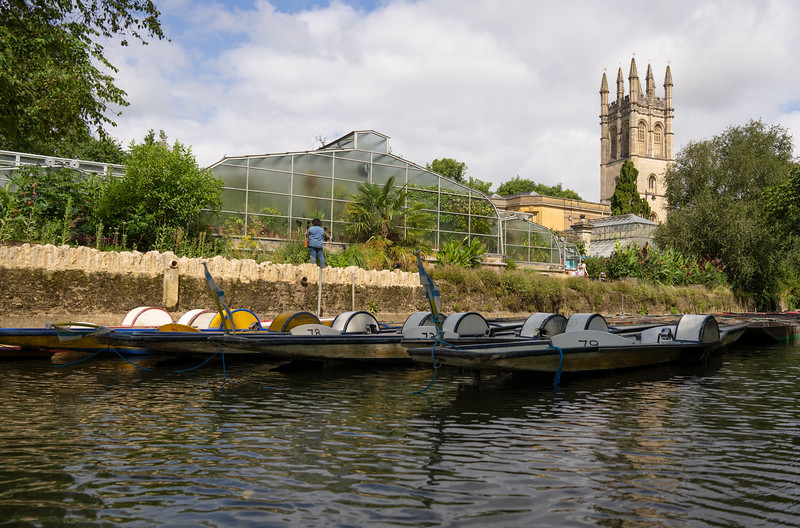 Punting on the River Cherwell in Oxford, Looking Towards Botanic Gardens
