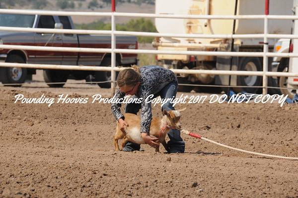 Sierra County 6-23-13 Nov Goats