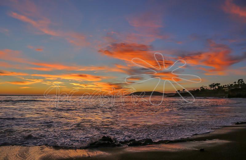 Shell Beach_38