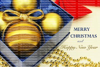 Christmas Joy and Happy Holidays