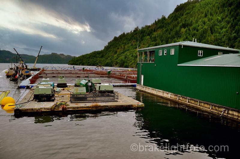 Fish Farm in Muchalat Inlet