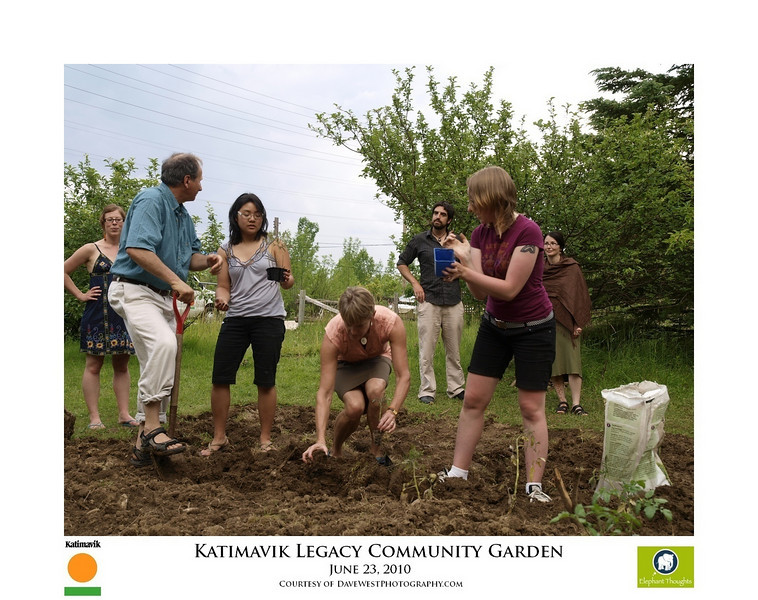 Katimavik Legacy Community Garden  78.jpg
