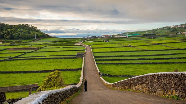 Terceira Azores 2017