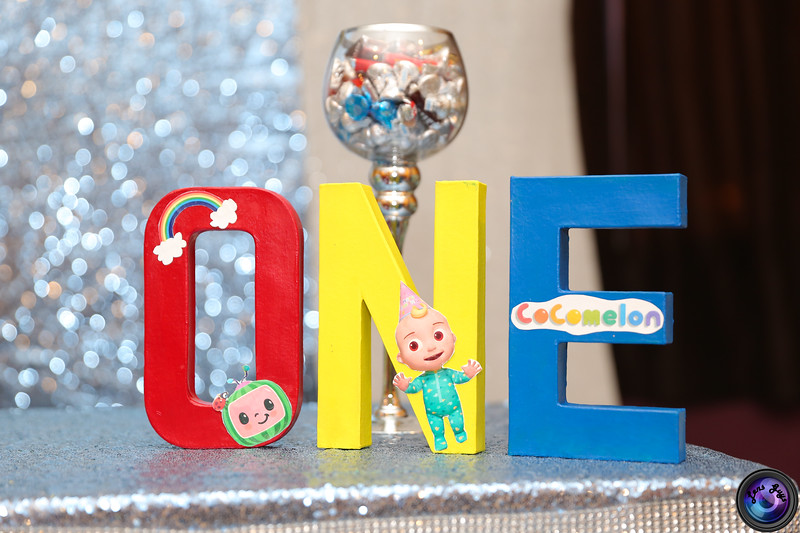 Preview - First Birthday Party