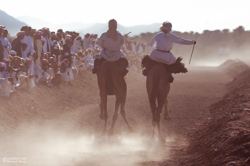 IMG_1307- Camel Race.jpg