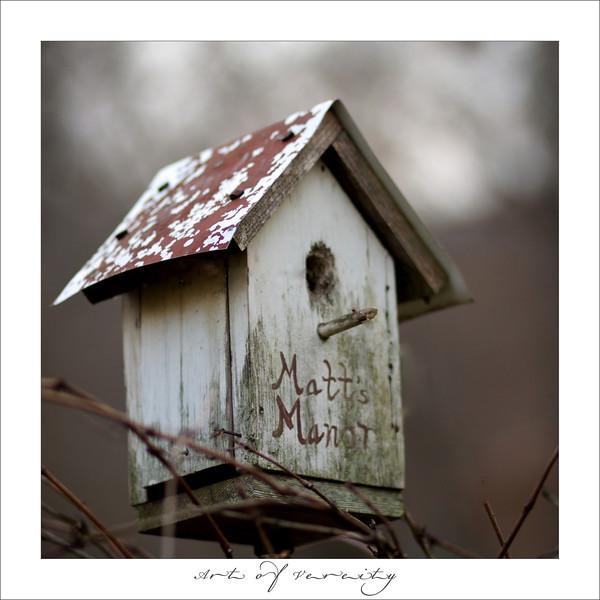 Bird house Matt.jpg