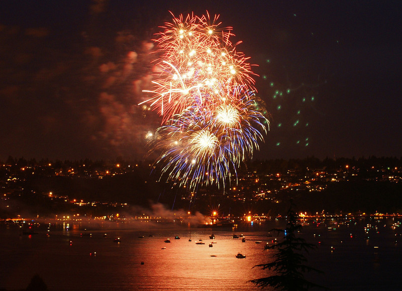 fourth fireworks 2009_6c.JPG