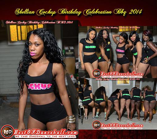 8-8-2014-BRONX-Shellian Cockup Birthday Celebration BBQ 2014