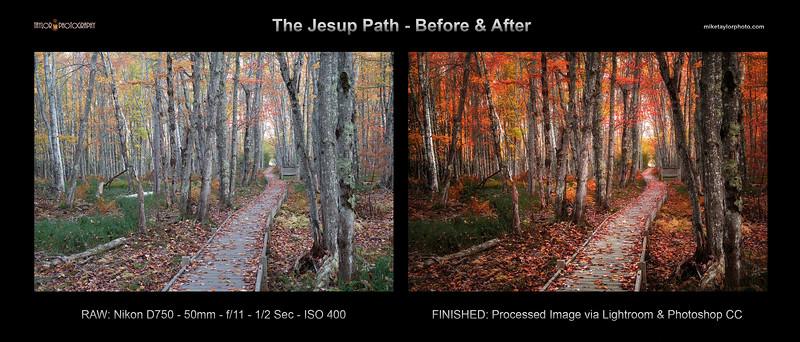 Jesup Path, Acadia NP Maine - B&A