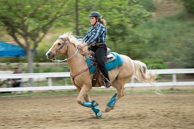 Rider 31