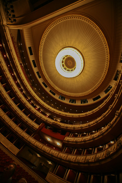Ceiling and Seating of Vienna Opera House