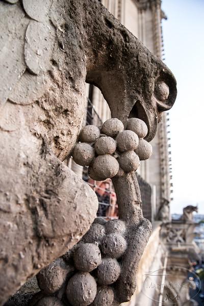 Notre Dame, Paris-30.jpg