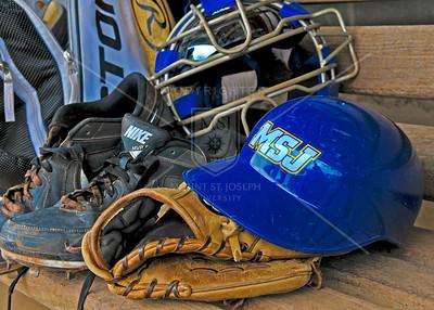 2014 Baseball Game