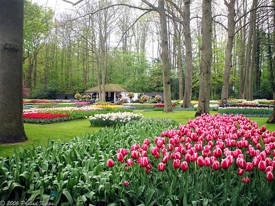 Photos from Keukenhof Gardens, Netherlands, April 2007