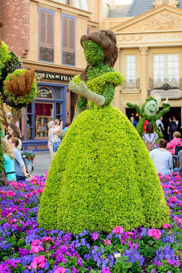 Belle Topiary - Epcot Flower & Garden Festival 2016