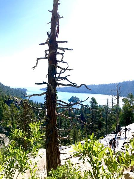 kam7-2019-Tahoe-18.jpg