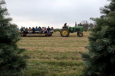 112720 Xmas Tree Farm (MA)