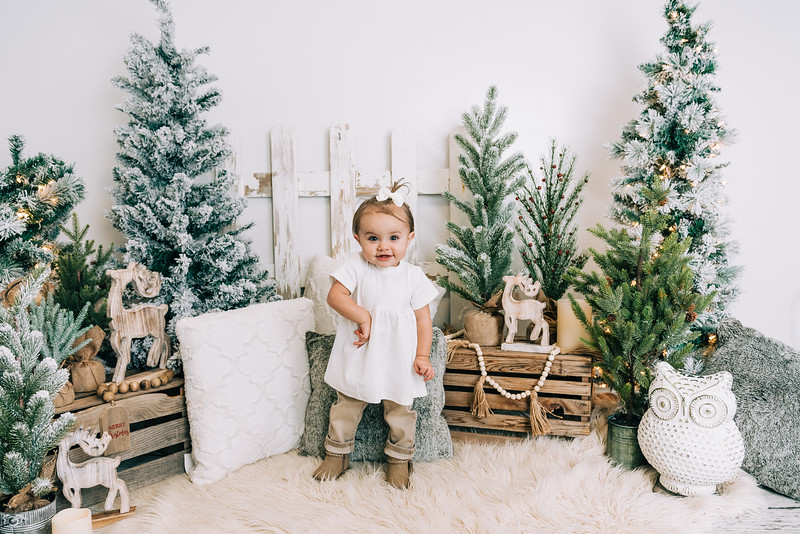 Christmas Mini Preview