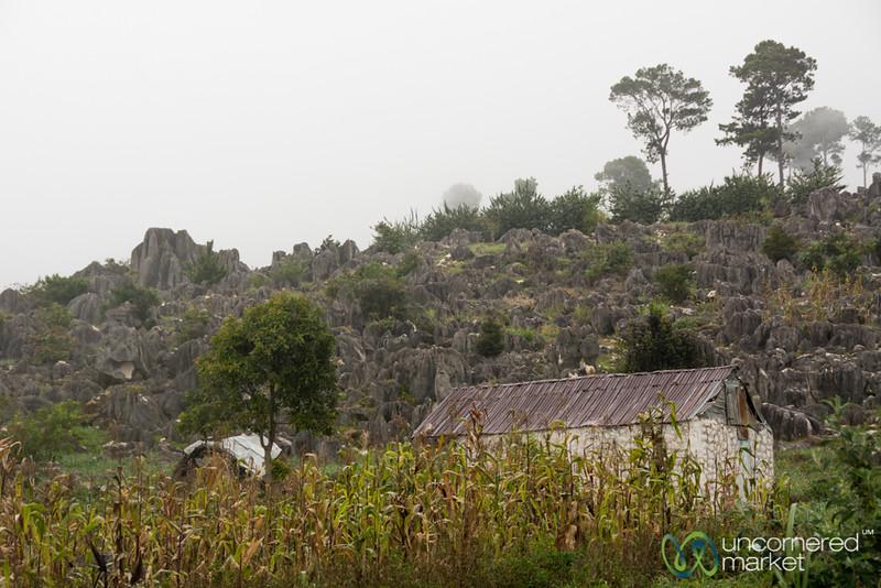 Family Farm - Rural Haiti