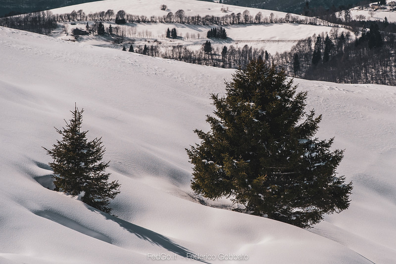 Fedgo-a73, Monte Asolone, Montegrappa, Neve-07 marzo 2020-5.jpg