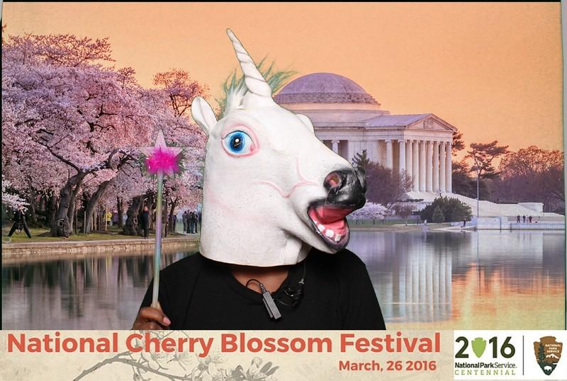 Boothie-NPS-CherryBlossom- (482).jpg