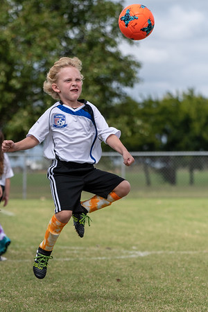 Shawnee Force Soccer